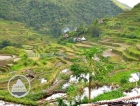 Batad Rice Terraces in the Philippines (2)