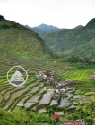 Batad Rice Terraces in the Philippines (1)